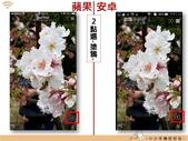 Line 編輯圖片:lineimgporg_04.jpg
