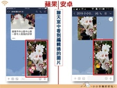 Line 編輯圖片:lineimgporg_24.jpg