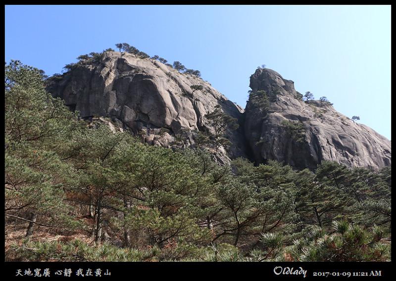 我在黃山一:IMG_5238.jpg