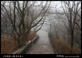 我在黃山三:IMG_6941.jpg