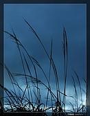 福壽山的日出:DSC_7576