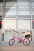08-08-24 單車遊記-桃紅T3:K_04.JPG