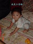 小桓桓特輯1(2006-11-02):小青蛙