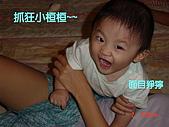 小桓桓特輯1(2006-11-02):抓狂小桓桓~