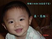 小桓桓特輯1(2006-11-02):燦爛小桓桓