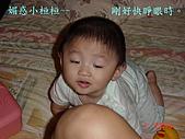 小桓桓特輯1(2006-11-02):媚惑小桓桓