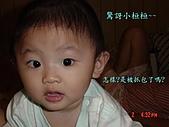 小桓桓特輯1(2006-11-02):驚訝!