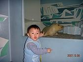 2007.12.07~12.08 台中遊:丞與小海豹