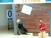 2005.04.01 花蓮太魯閣海洋公園二日遊:DSCF0040