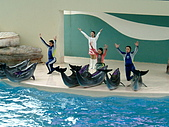 2005.04.01 花蓮太魯閣海洋公園二日遊:DSCF0082