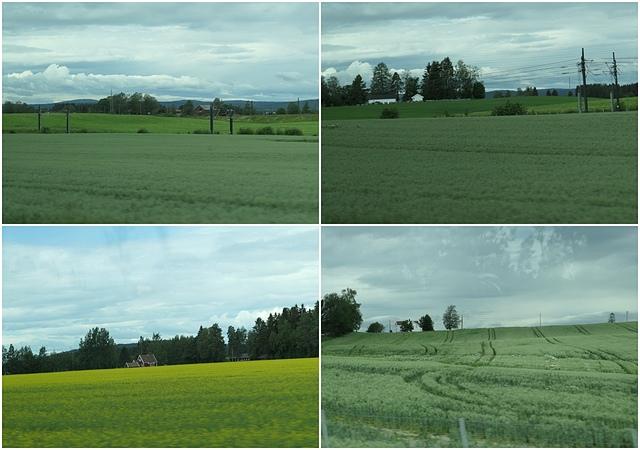 0701 (1).jpg - 2019挪威冰島瑞典