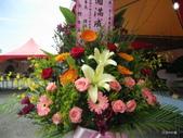 華東盆栽藝術展覽: 華東盆栽藝術展覽_125.JPG