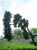 花蓮鐵道文化園區:花蓮鐵道文化園區_195.JPG