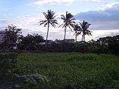 花東縱谷 平原 彩畫 風景 圖   (16):花東縱谷 大地豐收 風景 圖_11.jpg