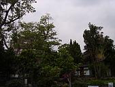亞士都後花園風采:亞士都後花園風采4.JPG