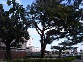 花蓮鐵道文化館 花蓮網站:花蓮鐵道文化館 花蓮網站24.JPG