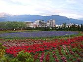 知卡宣森林公園 花蓮平價網站:ST837753_大小 .JPG