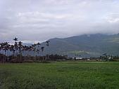 花東縱谷 平原 彩畫 風景 圖   (16):花東縱谷 大地豐收 風景 圖_13.jpg