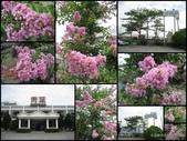 花蓮餐廳 青葉餐廳:花蓮餐廳 青葉餐廳1.jpg