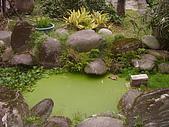 亞士都後花園風采:亞士都後花園池塘1.JPG