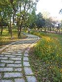 知卡宣森林公園 花蓮平價網站:ST837886_大小 .JPG