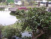 亞士都後花園風采:亞士都後花園池塘9.JPG