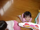 花蓮 新象 繪本館 花蓮網站資訊:ST831324_大小 .JPG
