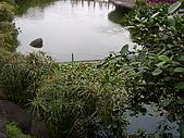 亞士都後花園風采:亞士都後花園池塘10.JPG