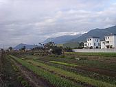 花東縱谷 平原 彩畫 風景 圖   (16):花東縱谷 大地豐收 風景 圖_07.jpg