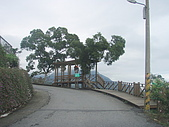 花蓮吉安楓林步道:花蓮吉安鄕楓林步道之美