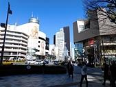 東京自由行九天八夜第六日:DSCN1278.JPG