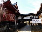 東京自由行九天八夜第七日:DSCN1752.JPG