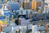 2018大阪城:P1270209.JPG