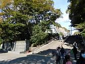 東京自由行九天八夜第七日:DSCN1738.JPG