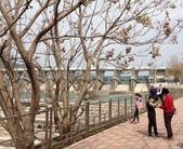 2018石岡水壩:IMG_1068.JPG