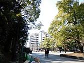 東京自由行九天八夜第七日:DSCN1736.JPG