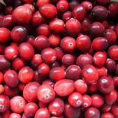 蔓越莓:Cranberry06f.jpg