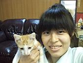 遠東生活:DSCF5591.JPG