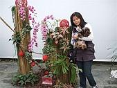 97年2、3月屏東熱帶博覽會:DSCF0946.JPG