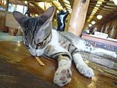 遠東動物園:L1040098.JPG