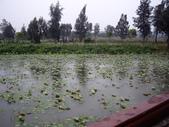 金門-雙鯉湖濕地自然中心:2009金門雙鯉湖濕地自然中心21.JPG