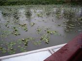金門-雙鯉湖濕地自然中心:2009金門雙鯉湖濕地自然中心23.JPG