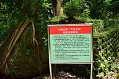 嘉義-竹崎親水公園:20140906竹崎親水公園42.JPG
