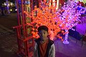 彥宇2014:20141129台南-南鯤鯓羅天大醮燈會187.JPG