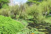 台南-巴克禮紀念公園:20140411巴克禮紀念公園20.JPG