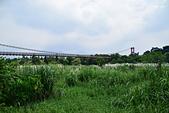嘉義-竹崎親水公園:20140906竹崎親水公園66.JPG