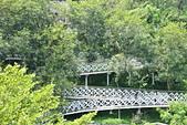 嘉義-竹崎親水公園:20140906竹崎親水公園7.JPG