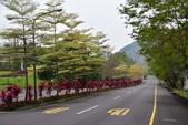 台南-曾文水庫:20140406曾文水庫11.JPG