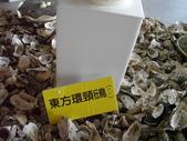 台南-台江國家公園:2012台江國家公園9.JPG
