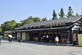 無錫-靈山大佛:靈山大佛2017-10-08-9.JPG